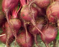 Beets_vow_003