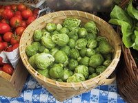 Brussel_sprouts_loose